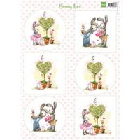 A4, scheda tecnica: Bunny Love