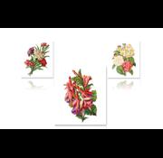 Bilder, 3D Bilder und ausgestanzte Teile usw... 3D pre-cut A4 sheet: roses, carnations, fuchsias