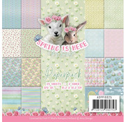 "Karten und Scrapbooking Papier, Papier blöcke Cards and scrapbooking paper, ""Spring is here"""
