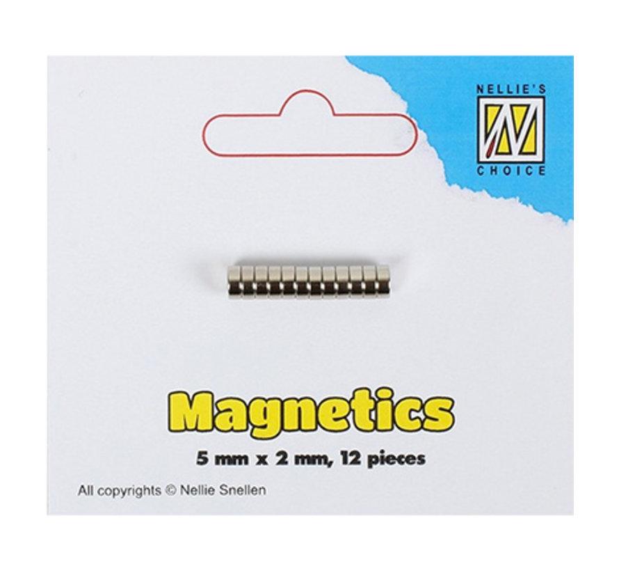 12 mini magnets, 5 x 2 mm