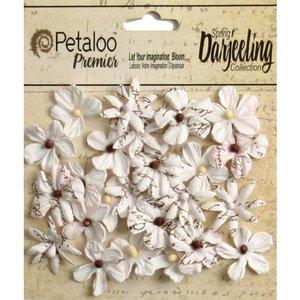 Prima Marketing und Petaloo Petaloo, 24 fleurs miniatures en blanc