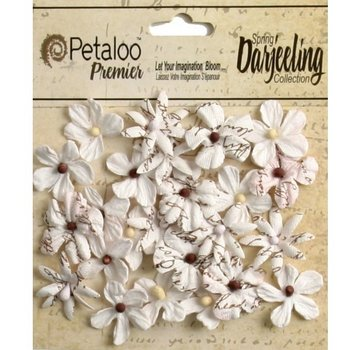Prima Marketing und Petaloo Petaloo, 24 miniature flowers in white