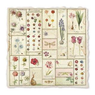 Stamperia und Florella hermoso papel hecho a mano, botánico, 30.5 x 30.5cm