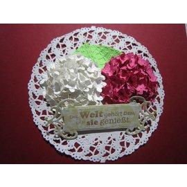 Locher / Stanzer / Punch NEU! Blumenstanzer  (Ersatz für den Olba Blumenstanzer) - Edelstahl mit Softgrip. Stanzt Papier und Pappe bis 180 g . Lochgröße 5 mm