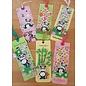 Marianne Design Eline's animals - Panda's, Stempel und Stanzschablonen Paket Format: 150 x 210 mm