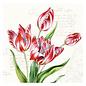 DECOUPAGE AND ACCESSOIRES Decoupage, tovagliolo di design, fiori