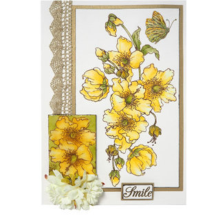 CREATIVE EXPRESSIONS und COUTURE CREATIONS Transparante stempel: Hypericum