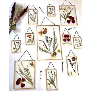 Gedrukte gedroogde bloemen en bladeren, luchtdicht verpakt, ter decoratie