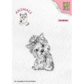Postzegel, Yorkshire Terrier, 41 x 55 mm