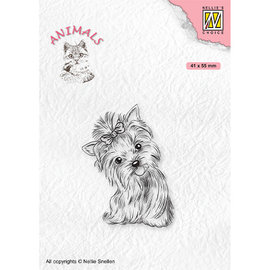 Stamp, Yorkshire Terrier, 41 x 55 mm