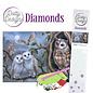 BASTELSETS / CRAFT KITS Diamant  Bastelset, Eulen