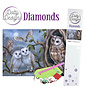 BASTELSETS / CRAFT KITS Diamant knutselset, uilen