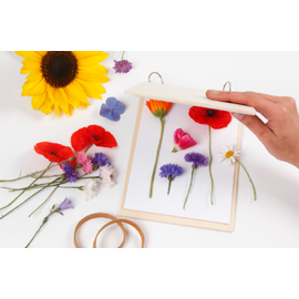 Flower press made of light wood with lockable metal rings and 20 blank pages (120 g)