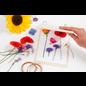 Bloemenpers van licht hout met afsluitbare metalen ringen en 20 blanco pagina's (120 g)