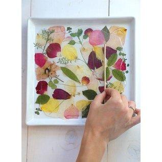 Embellishments / Verzierungen Ein Set getrocknete und gepreßte Blumen