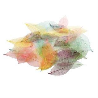 Docrafts / Papermania / Urban Willow Blätter Skelettiert