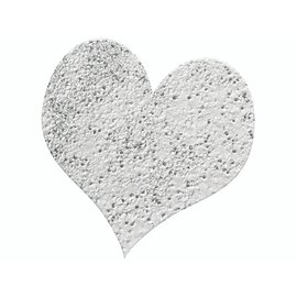FARBE / STEMPELKISSEN 10g polvo que realza el brillo de plata