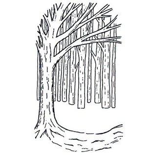 CREATIVE EXPRESSIONS und COUTURE CREATIONS Gummi Stempel, Hintergrund Baum