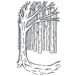 CREATIVE EXPRESSIONS und COUTURE CREATIONS Rubber stamps, background Tree