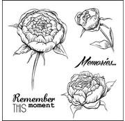 """Stempel / Stamp: Transparent Tampons transparents réglée, """"roses"""""""