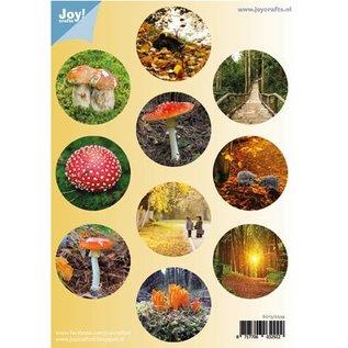 Bilder, 3D Bilder und ausgestanzte Teile usw... A4 Gestantzte Bogen: Herbst