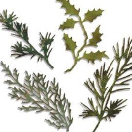 Sizzix Stempelen en embossing stencil, Sizzix thinlits, set van 4 takken met bladeren