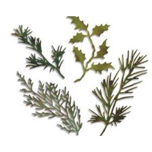 Sizzix Stanz- und Prägeschablone, Sizzix thinlits, Set mit 4 Zweige mit Blätter