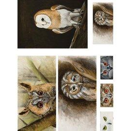 DECOUPAGE AND ACCESSOIRES Papier découpage 50x70cm doux, Owl