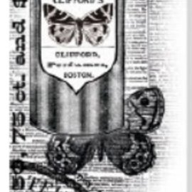 Kaisercraft und K&Company Borrar sellos Kaiser Artesanía