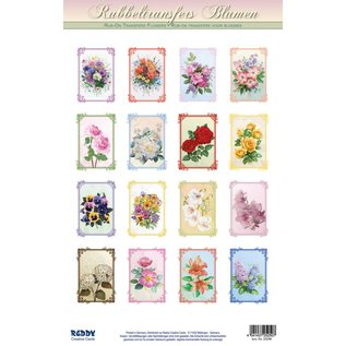 REDDY Wrijven, 16 boeketten voor mini kaarten