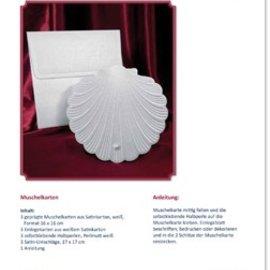 BASTELSETS / CRAFT KITS Kit de bricolage pour 3 cartes Shell