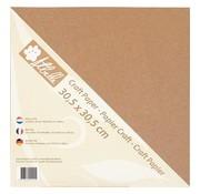 Designer Papier Scrapbooking: 30,5 x 30,5 cm Papier Kraft paper, 30.5 x 30.5cm, 300g, 20 sheets