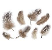 Embellishments / Verzierungen Dekorative fjer, natur