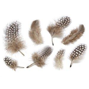 Embellishments / Verzierungen Decoratieve veren, natuur