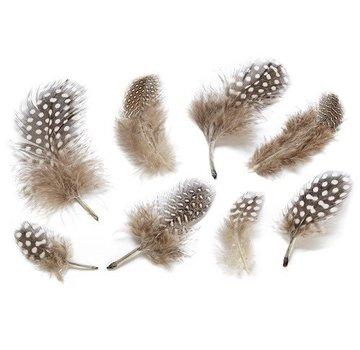 Embellishments / Verzierungen Decorative feathers, nature
