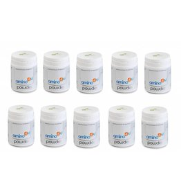 amino4u Amino4u Powder, 120g, 10-pack