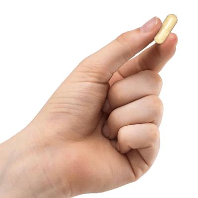 Life Extension Go-Keto Electrolytes, 120 Capsules