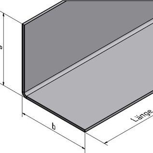 Versandmetall RVS 304 Hoekprofiel Hoekstrip L-Profiel roestvrij Staal gezet gelijk 90° Lengte 1000 mm