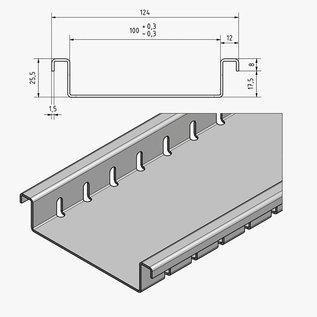 Versandmetall Roestvaststalen afvoerkanaal vanaf inlaatbreedtes 100 tot 200 mm Lijndrainage van oppervlakken