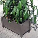 Versandmetall Set (2 pièces) planteur de planteur en acier inoxydable spécial unilatéral avec coupe fine (grain 320) dimensions: PK 20-80 extérieur A: 28cm, L: 92cm, H: ~ 43cm = axbxh intérieur 20cm x 84cm x ~ 36cm
