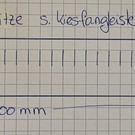 Versandmetall Set Sonderbleche 30 x 2000mm- ALU roh Materialstärke 1,5 mm, Abmessungen 250 x 2000mm, Schlitze analog zu Kiesfangleisten (Länge 70 mm Breite 5,5 mm, Abstand 19,50mm) Position gemäß Skizze