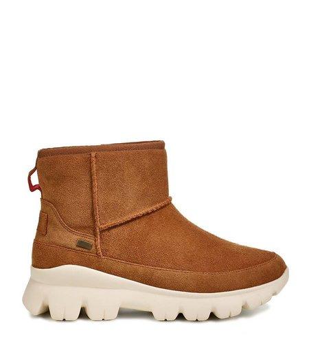 UGG Palomar Sneaker Chestnut