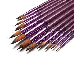 Paint Brush Set 12 Stuks