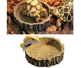 Voederbak Reptielen