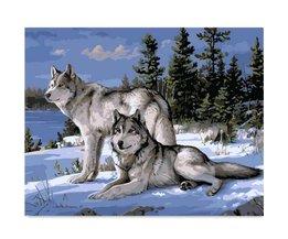 Wolf Schilderen op Nummer met Olieverf 40x50CM