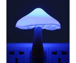 Lamp Met Lichtsensor LED