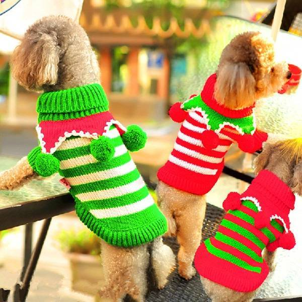 Kersttrui Mopshond.Hondenkleding Kersttrui Kopen I Myxlshop