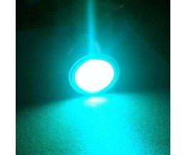RGBW Lamp