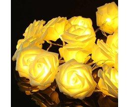 Snoer Met LED Lampjes