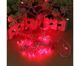 Rode LED Verlichting